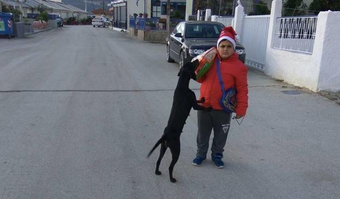 Χριστούγεννα σκυλοτροφή Αδέσποτα