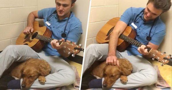 Κτηνίατρος τραγουδάει σε κουτάβι για να το ηρεμήσει πριν το χειρουργείο
