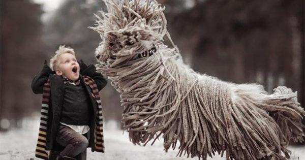 Αυτός ο μεγάλος σκύλος που παίζει με ένα αγοράκι θα σας φτιάξει την μέρα