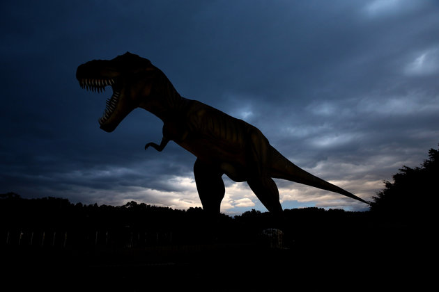 SUNSHINE COAST, AUSTRALIA - AUGUST 27: (EUROPE AND AUSTRALASIA OUT) A giant Tyrannosaurus Rex statue is seen on the golf course at the Palmer Coolum Resort, owned by Australian politician Clive Palmer, on August 27, 2014 on the Sunshine Coast, Australia. Billionaire Palmer bought the 324-room Hyatt Regency resort in 2011. At the time, it was the jewel in the Sunshine Coast's tourism economy - luxurious, immaculately maintained and full to the brim with happy holidaymakers. Today, rebadged under the self-aggrandising name of Palmer Coolum Resort, it is a ghost town. Hunderds of workers have been laid off, bars and restaurants have been closed, and those that remain open are empty and chronically understaffed. (Photo by Nathan Edwards/Newspix/Getty Images)