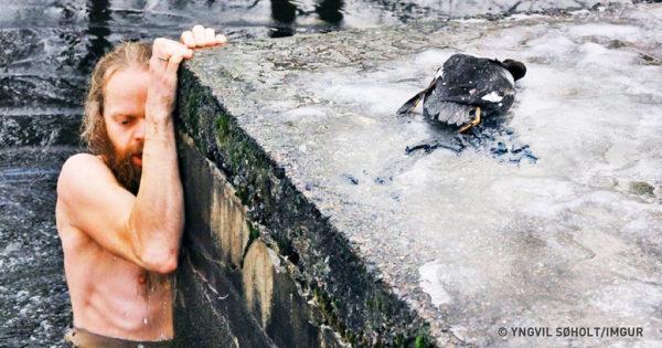 10 ζώα που δεν θα είχαν ζήσει αν δεν τα βοηθούσαν άνθρωποι