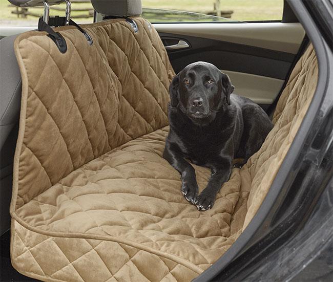 αξεσουάρ αυτοκινήτου για σκύλους