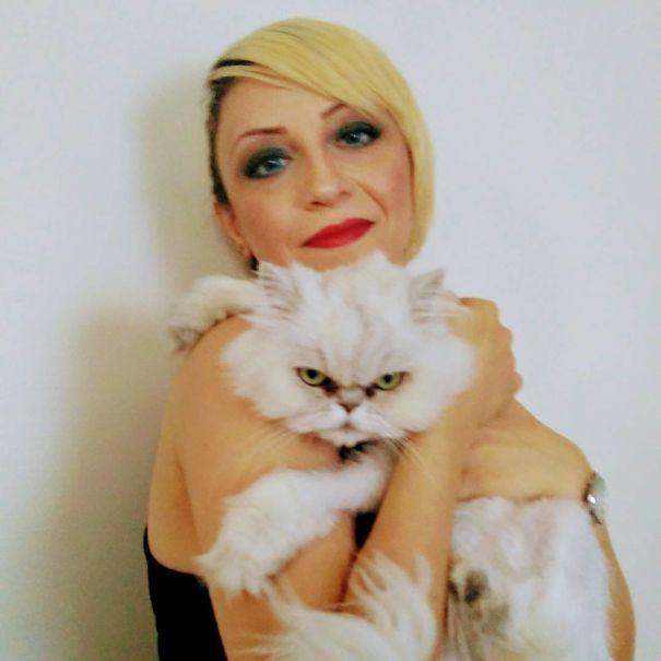 γάτες selfies
