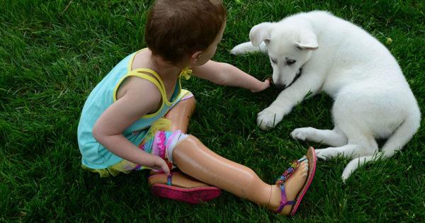 3χρονο κοριτσάκι που έχει χάσει τα πόδια του παίρνει ως δώρο σκυλάκι που του λείπει μια πατούσα