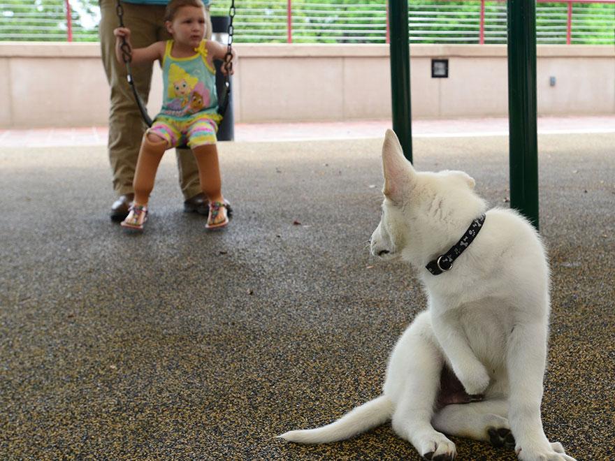 Σκύλος κορίτσι
