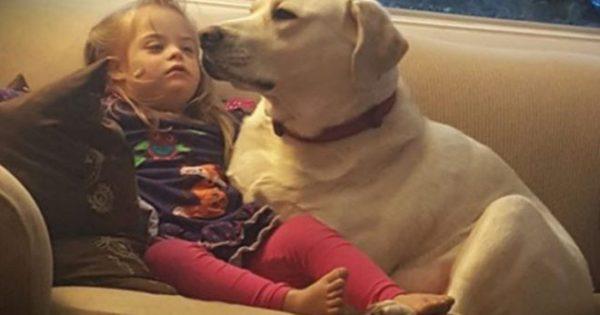 Όταν ο σκύλος τους έκανε αυτό έμειναν άφωνοι – Σήμερα το αποκαλούν «θεϊκή παρέμβαση»! (φωτό)