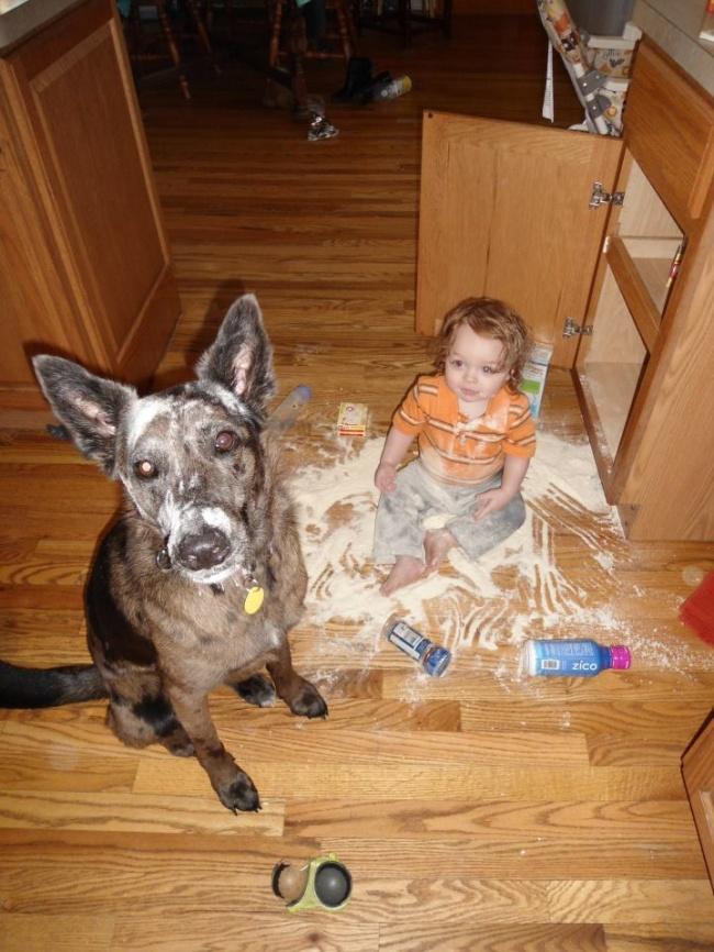 παιδιά και κατοικίδια παιδιά κατοικίδια