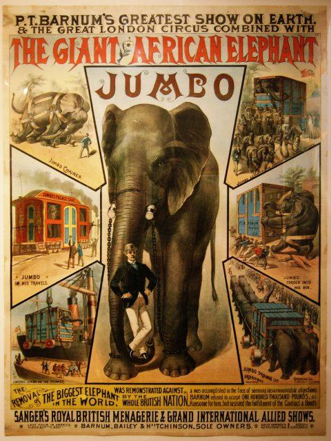 Τζάμπο ελέφαντας