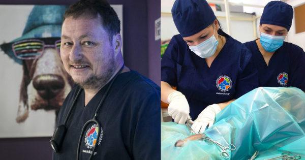 Ο Έλληνας γιατρός και η ομάδα του που χαρίζουν καθημερινά τη ζωή τους στα αδέσποτα