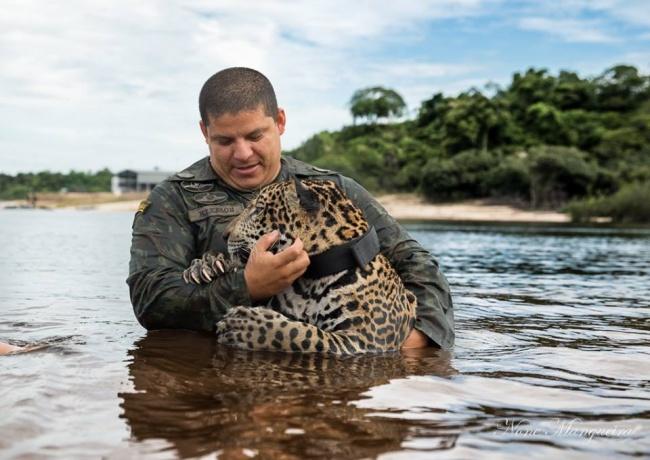 ζώα διάσωση ζώων