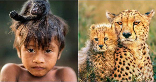 Οι 18 πιο δημοφιλείς φωτογραφίες του National Geographic στο Instagram για το 2017