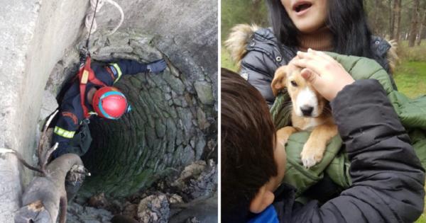 ΕΛΕΟΣ: Ασυνείδητος πέταξε κουτάβι σε πηγάδι 20 μέτρων στον Τύρναβο