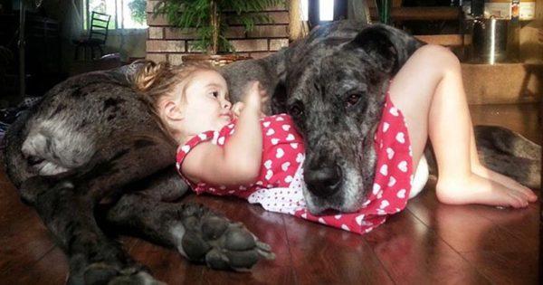 Ο ξεχωριστός δεσμός παιδιών και σκύλων μέσα από φωτογραφίες