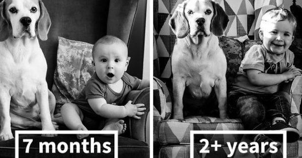 Μωράκι και σκύλος φωτογραφίζονται κάθε μήνα στην ίδια καρέκλα και μεγαλώνουν μαζί! (Photos)