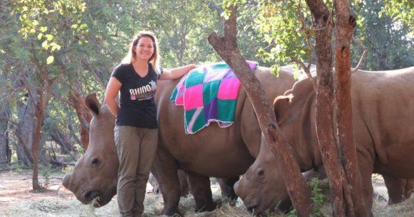 Ορφανοί ρινόκεροι ενθουσιάζονται που κάποιος τους έδωσε νέες κουβέρτες