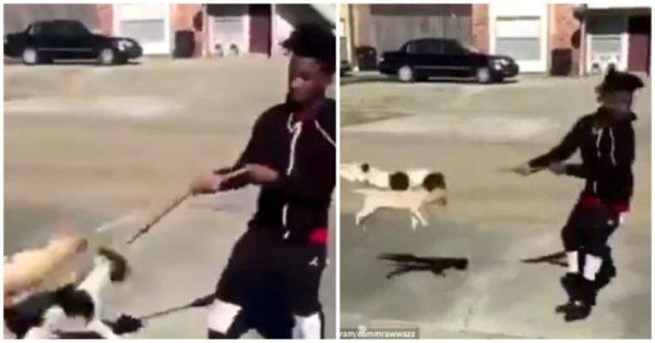 Ενήλικος ανέβασε βίντεο που τον δείχνει να εκσφενδονίζει δύο κουτάβια στον αέρα και τώρα είναι αντιμέτωπος με την δικαιοσύνη