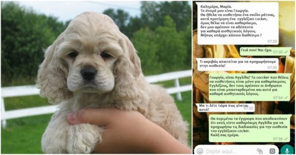 Η Γεωργία θέλει ένα σκύλο ράτσας για καθαρά αισθητικούς λόγους και πήρε την απάντηση που της άξιζε