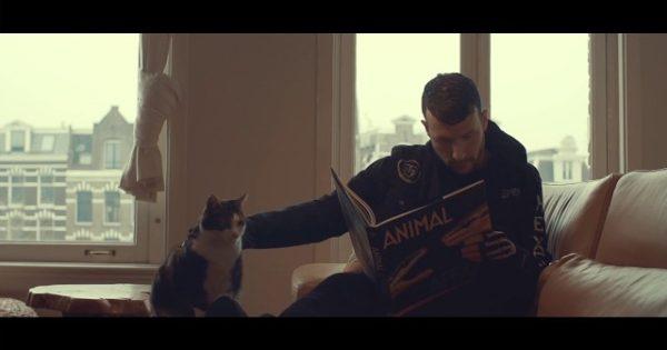 """Όσοι αγαπάτε τα ζώα πρέπει να δείτε το νέο video του Don Diablo """"Higher"""""""