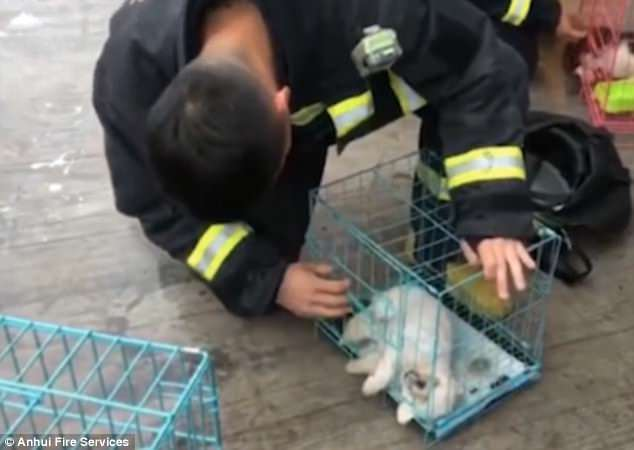 πυροσβέστης Κίνα