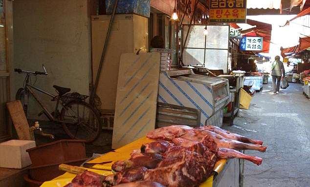 σφαγή σκύλων Νότια Κορέα