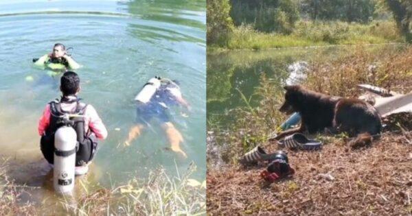 Ο Κηδεμόνας Του Είχε Πνιγεί Και Ο Σκύλος Τον Περίμενε Για Ώρες Έξω Από Το Νερό