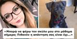 Ρώτησε τον καθηγητή της αν μπορεί να φέρει τον σκύλο της μέσα στην τάξη. Η απάντησή του; Την άφησε άγαλμα!