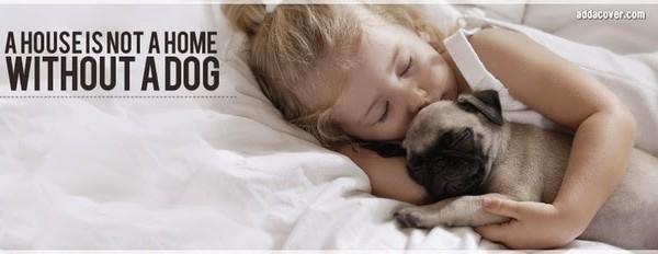 Τα καλύτερα facebook covers με ζώα!