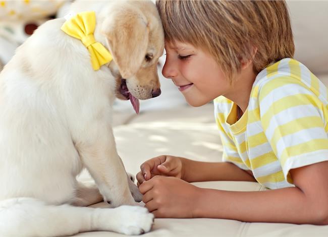 Σκύλος παιδιά κατοικίδιο κατοικίδια γονείς