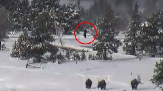Ο Μεγαλοπόδαρος on camera; Απίστευτο βίντεο!