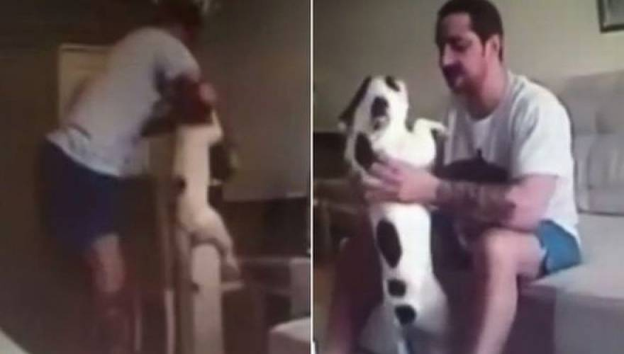 dog-abuser