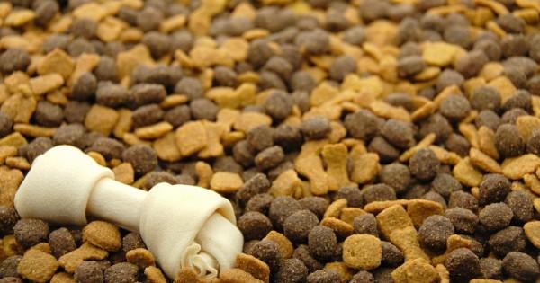 1600 κιλά ξηράς τροφής για τα αδέσποτα ζώα της Χίου!