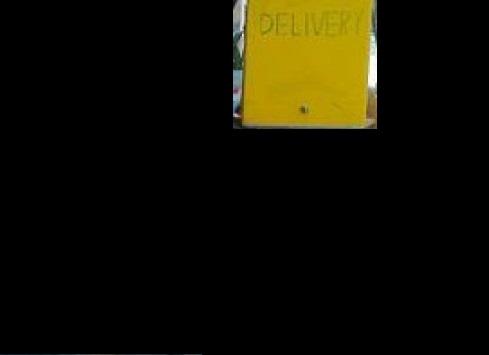 Ηλεία γαϊδουράκια γάιδαρος delivery