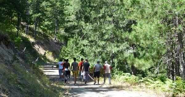 Μαθητές θα κάνουν βόλτα… παρέα με τις αρκούδες!