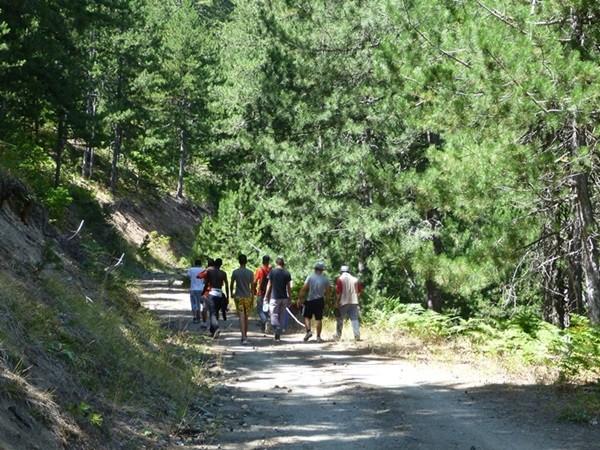 μαθητές βόλτα αρκούδες