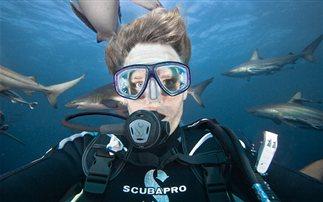 Τολμηρή φωτογράφος βγάζει selfies με καρχαρίες