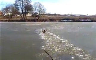 Βούτηξε σε παγωμένη λίμνη για να σώσει σκύλο! (βίντεο)