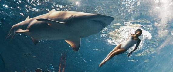 Η Rihanna κολυμπάει μαζί με καρχαρίες!