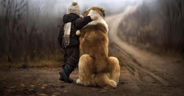 Γιατί μας αγαπάει ο σκύλος μας; (video)