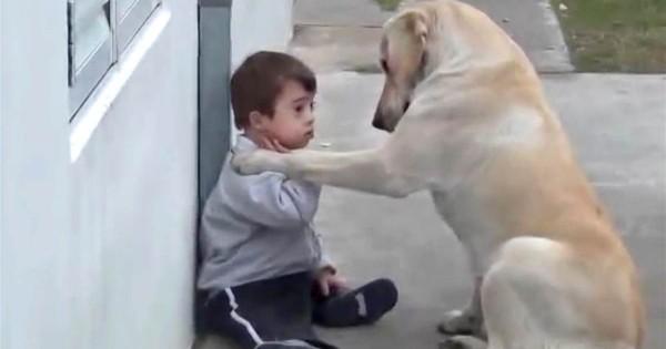 ΣΥΓΚΙΝΗΤΙΚΟ: Η τρυφερή αγκαλιά ενός σκύλου σε ένα παιδάκι με σύνδρομο Down