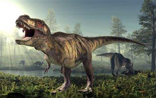 Όλα όσα δεν γνωρίζουμε για τον Τυραννόσαυρο Ρεξ