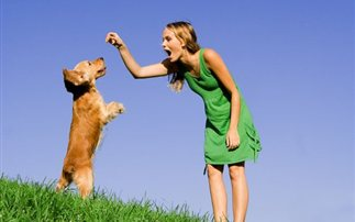 Όταν το σκυλί συμπεριφέρεται άσχημα – Πώς επηρεάζει τα κατοικίδια η στάση των ιδιοκτητών τους