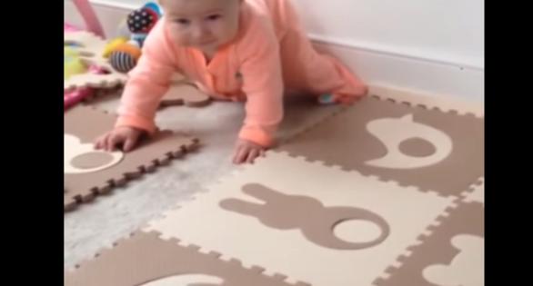 Όταν ο σκύλος ζηλεύει το μωρό! (video)