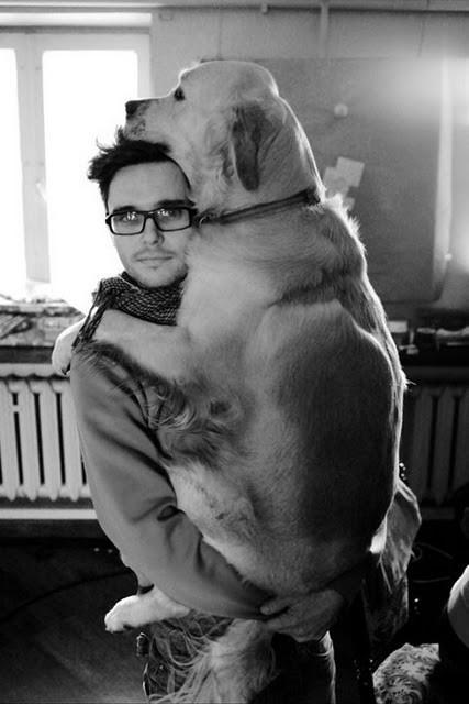 σκύλοι κουτάβια Εικόνες