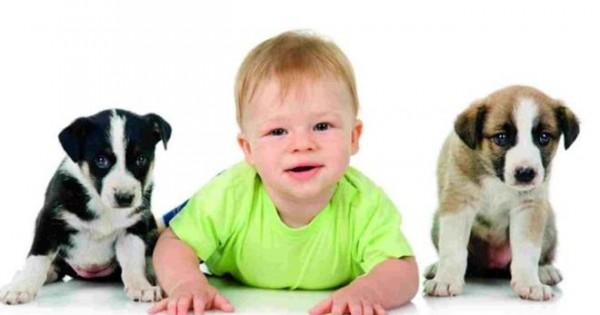 Έχω μωρό ή παιδί, μπορώ να πάρω σκύλο;