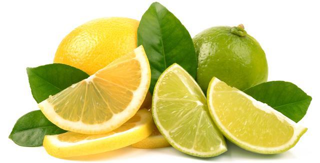 Σκύλος λεμόνι Γάτα lime grapefruit