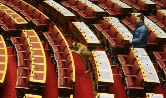 Ένας σκύλος μέσα στη… Βουλή (φωτό)