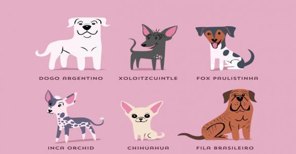 Άκρως εντυπωσιακό – Δείτε όλες τις ράτσες σκυλιών ανά γεωγραφική προέλευση! (εικόνες)