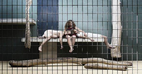 Εικόνες με νόημα – Πώς θα ήταν αν σε έναν ζωολογικό κήπο την θέση των ζώων έπαιρναν οι άνθρωποι
