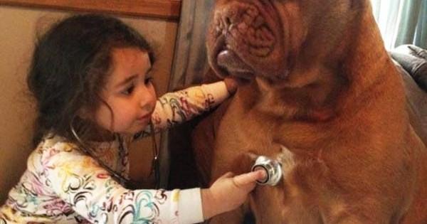 15 σκυλιά που θα έκαναν τα πάντα για τα παιδιά! (Εικόνες)