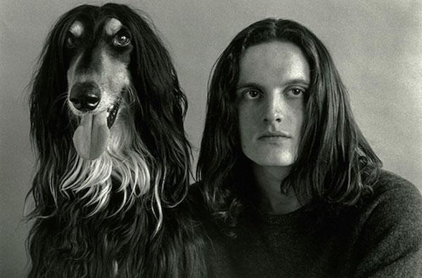 ομοιότητα ζώα
